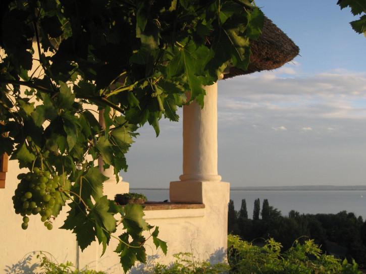 JURIS VILLA - Weine vom Balaton