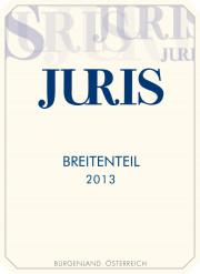Pinot noir 2013 BREITENTEIL (0,75l)